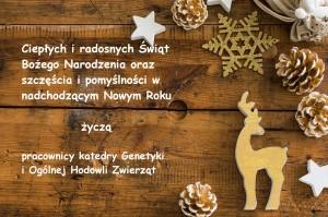 christmas-3826935_1920_2